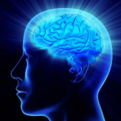 Neuro Marketing and its influence on our brain – is it possible to protect against it?